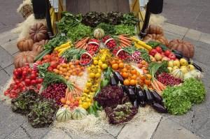 foodinc_organic